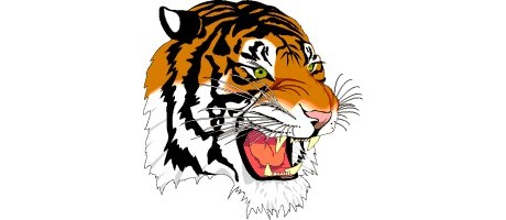 tiger_clipart_2.gif